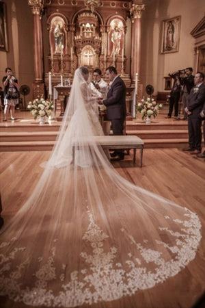 Fairy Tale Worthy One Layer Cathedral Length Lace Wedding Bridal Veil V15