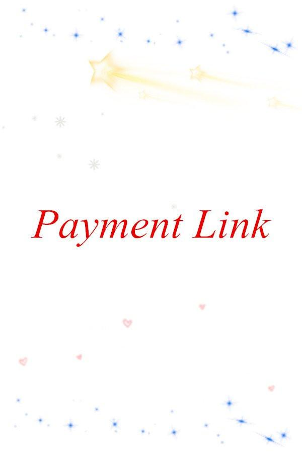 Payment Link