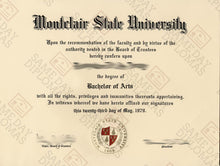 Bachelor Degree Diploma
