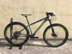 2018 FSI CARBON TEAM 27.5 Demo Bike