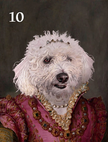 Renaissance historical F-10 female pet portrait