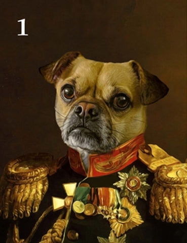 Renaissance historical M-01 male pet portrait