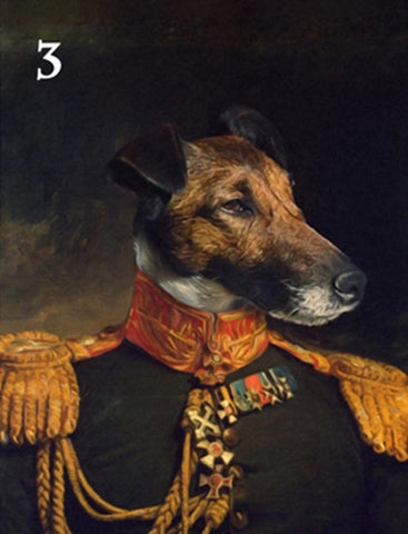 Renaissance historical M-03 male pet portrait