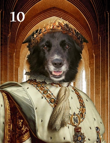 Renaissance historical M-10 male pet portrait