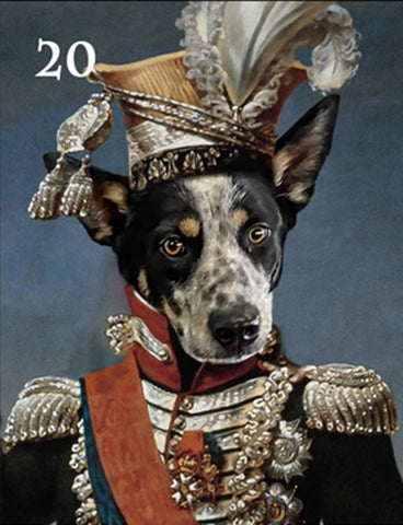 Renaissance historical M-20 male pet portrait