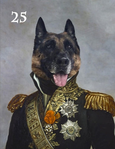 Renaissance historical M-25 male pet portrait