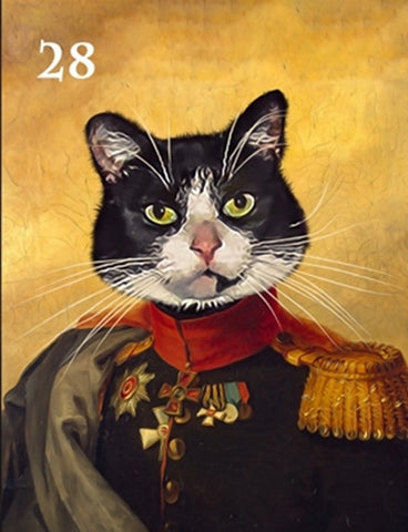Renaissance historical M-28 male pet portrait