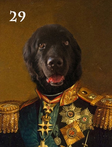 Renaissance historical M-29 male pet portrait