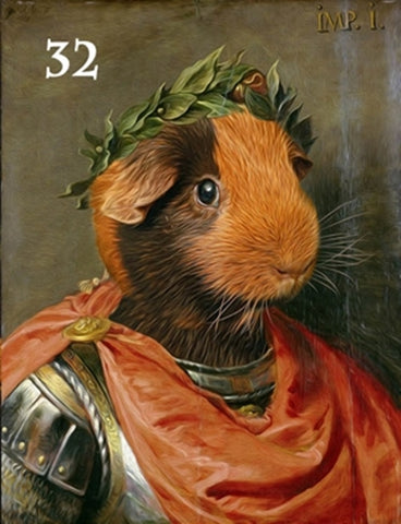 Renaissance historical M-32 male pet portrait