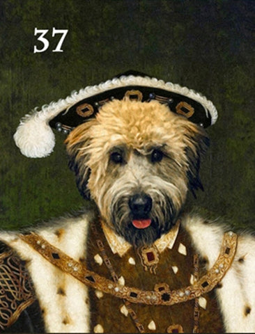 Renaissance historical M-37 male pet portrait