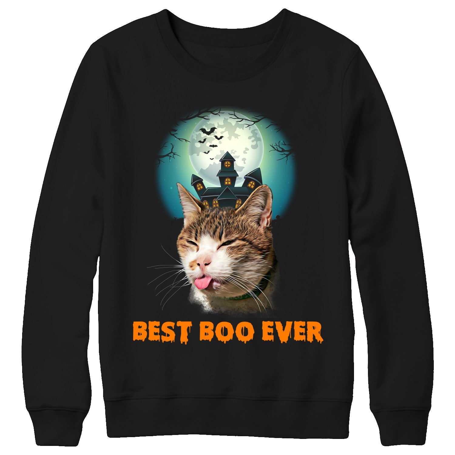 Cat best boo ever v2