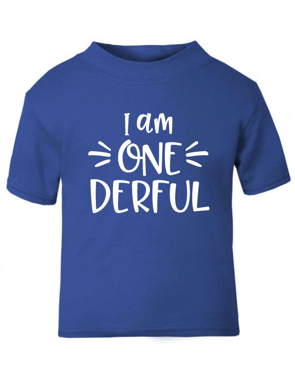 One Derful First Birthday T Shirt CheekyBabyTees Ltd