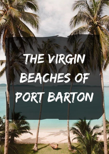 SOLVED: Port Barton - Travel Info Essentials