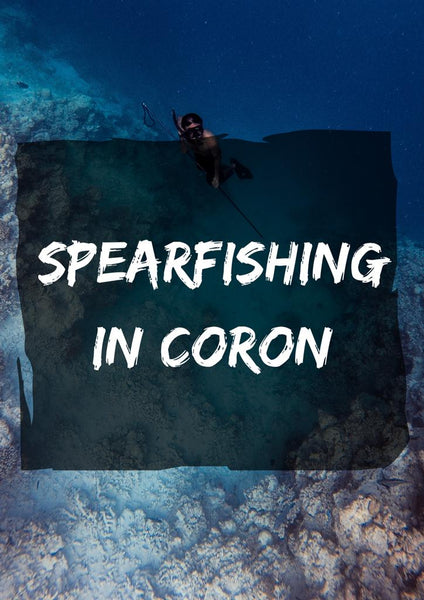 Spearfishing in Coron