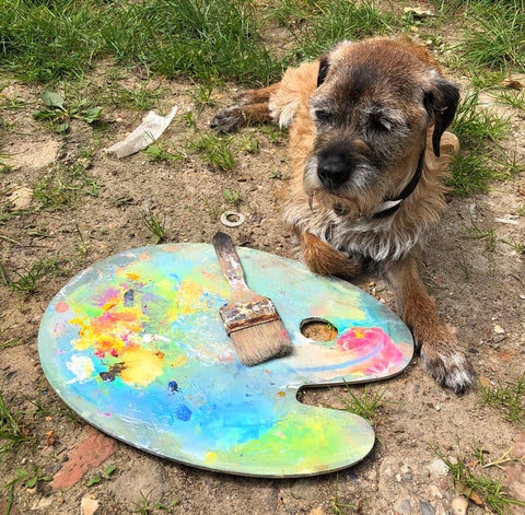 Our Muse Oz Dog the Arty Border Terrier