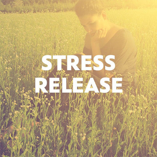 Stress Release Guided Meditation Bundle