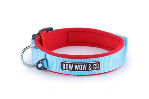 SURFS UP NEOPRENE DOG COLLAR