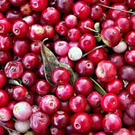 Fragancia de Cranberry Citrus