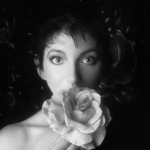 Kate Bush - Remastered in Vinyl Box Set II