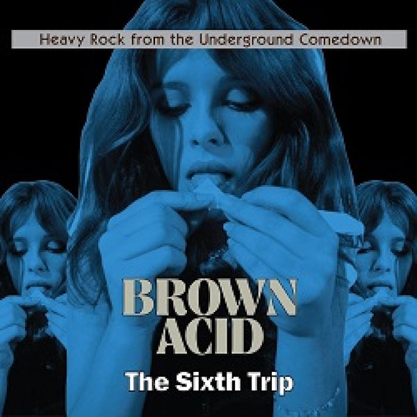 Various Artists - Brown Acid: The Sixth Trip