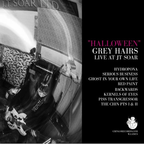 Grey Hairs - Halloween (Live At JT Sour)