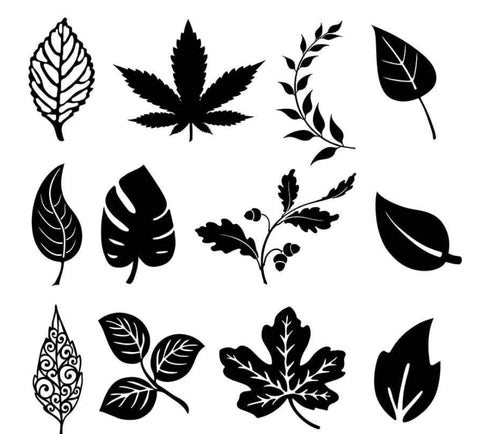 Leaf silhouette examples