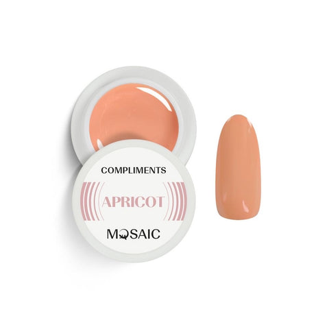 MOSAIC Gel-Paint Limited Edition COMPLIMENTS APRICOT