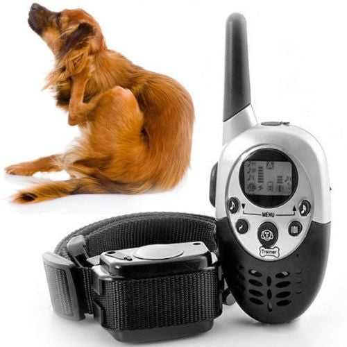 50 % OFF! Dog Training Collar