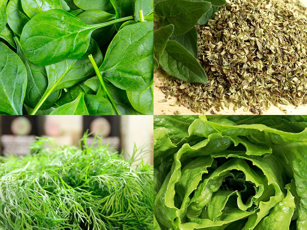 Hidden ancient uses of your living organic greens
