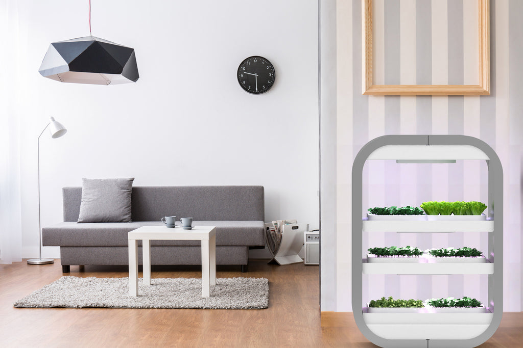 Own a tinyfarm, modgarden, and enjoy living organic food right in your living room or kitchen.