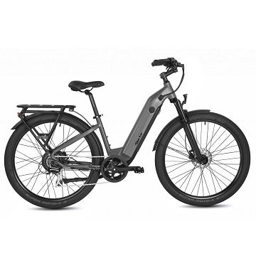 Cruising Electric Bikes