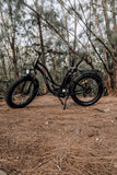 AmericanElectric STELLAR Electric Bike Step Through Black Forest_011e822b b975 451e beee 3dfce181a04f