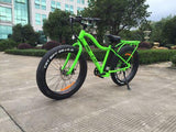Big Cat Fat Cat XL 500 Green Black