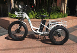 EMOJO Caddy PRO Trike Electric Fat Tire Tricycle Brick