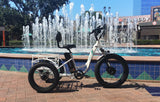 EMOJO Caddy PRO Trike Electric Fat Tire Tricycle Fountain