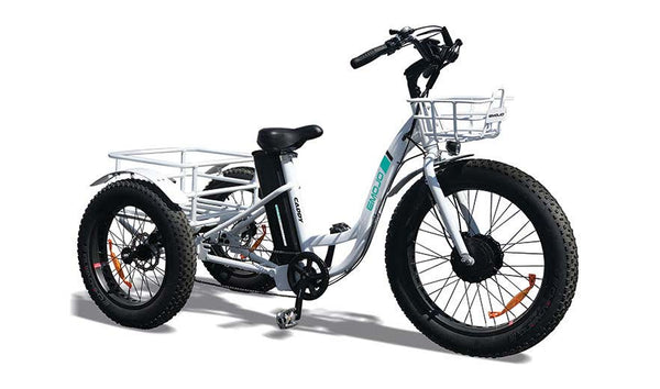 EMOJO Caddy Trike Electric Fat Tire Tricycle