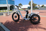 EMOJO Caddy Trike Electric Fat Tire Trike