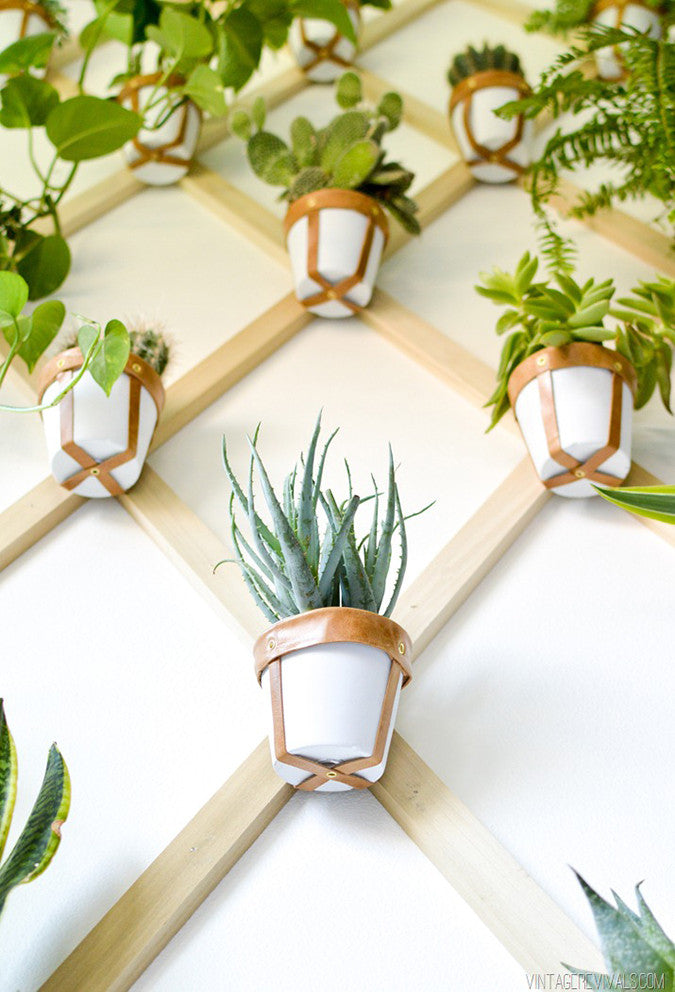 DIY Trellis Plant Wall from Vintage Revivals
