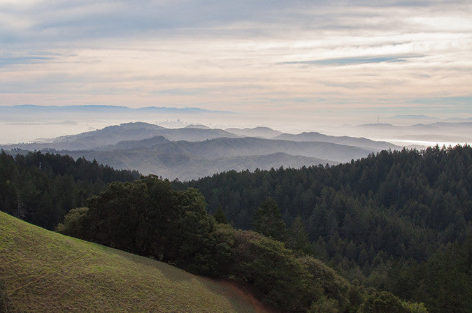 View of Bay Area from Mount Tamalpais