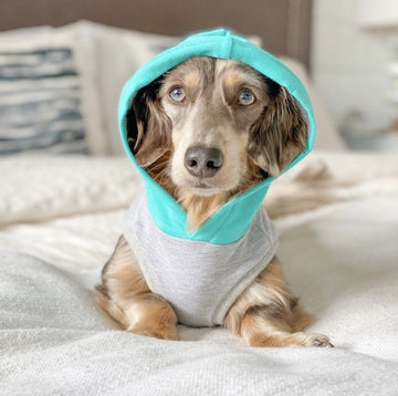 Bamboo Fleece Sleeveless Dog Hoodie