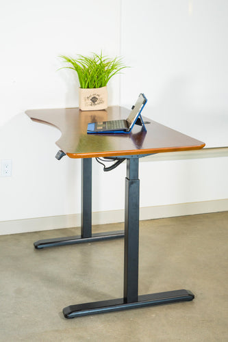 Canary/ErgoMax Black Electric Height Adjustable Desk Frame w/Single Motor - MyErgoDesk.com