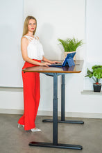 Load image into Gallery viewer, Canary/ErgoMax Black Electric Height Adjustable Desk Frame w/Single Motor - MyErgoDesk.com