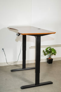 ErgoMax/Canary -Electric Height Adjustable Desk Frame w/Dual Motor,Tabletop Not Included - MyErgoDesk.com