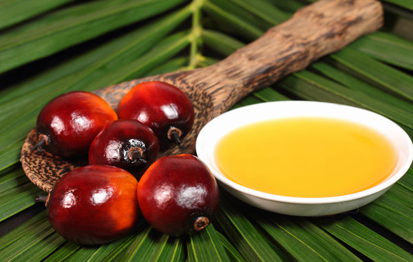 Palm Oil & Fruit