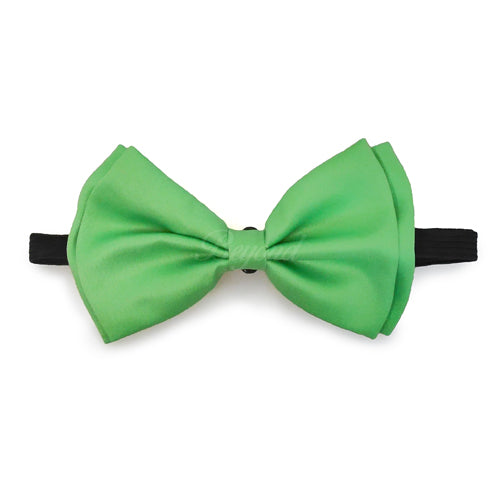 Light Green Matching Set Suspender and Bow Tie
