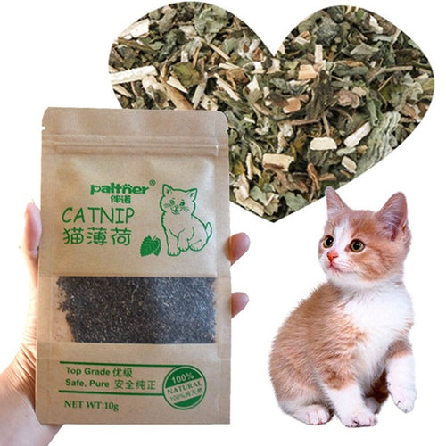 Organic 100% Natural Premium Catnip Cattle Grass 10g Menthol Flavor Funny Cat Toys Pet Products Funny Harmless Cat Toys