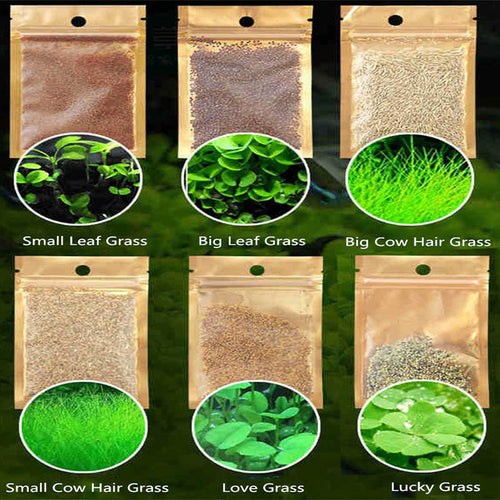 6 Pack Aquarium Plants Aquatic Water Grass Seeds Cow-hair LOVE Lucky Seeds Fish Tank Decoration Landscape Ornament