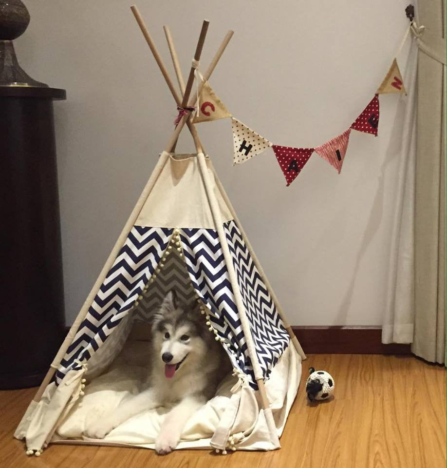 Pet teepee/ tent more than a pet bed it is house furniture ... & Pet teepee/tent: Rainbow me BLUE (pet dog cat beds design furniture ...