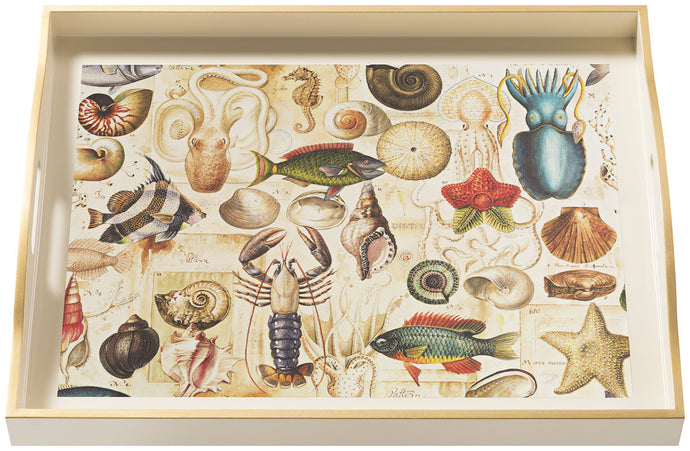 Ocean Life, large cream tray