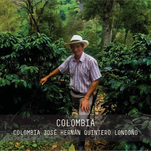 *LIMITED EDITION* Colombia Jose Hernan Quintero Londoño Filter Roast